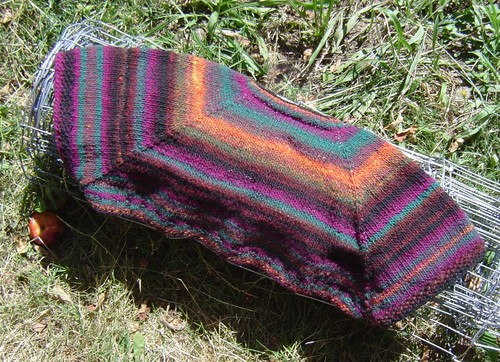 Noro One Skein Wonder